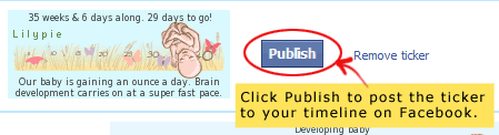 Facebook publish